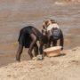lessive Lac Tanganica